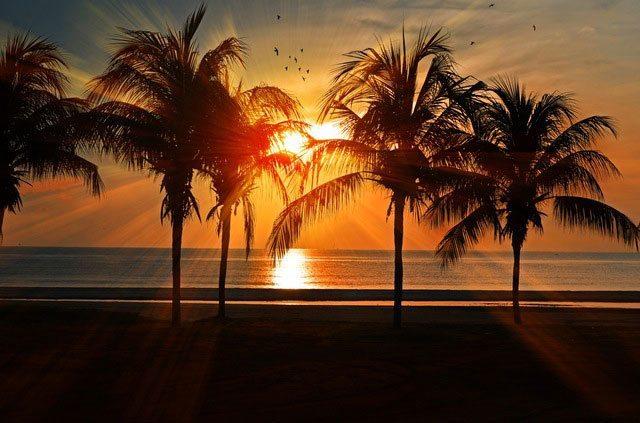 Florida car rental fees