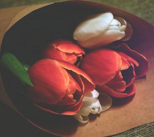floral order junk email